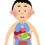 あなたのお子さんは大丈夫?小児期に発生しやすい結節性硬化症とは3