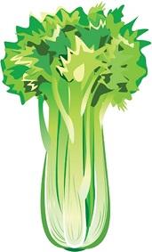 「目」と「肝臓」は繋がっている?!?気になる目の不調はあの野菜で解消!